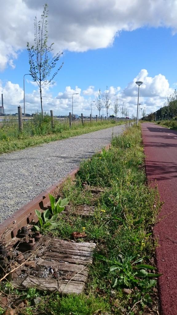 Het spoor getransformeerd tot voetgangersroute