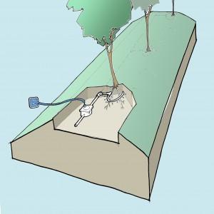 Waterhuishouding voor de beplanting op de wal